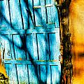 The Old Blue Door by Terry Fiala