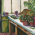 The Old Garden Shed by Judith Whittaker