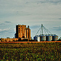 The Old Grain Mill by Kelly Reber