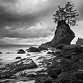 The Old Man Of The Sea - Strait Of Juan De Fuca by Nathan Mccreery