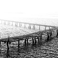 The Old Pier by Bill Cannon