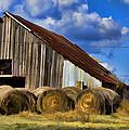 The Old Roadside Barn by Douglas Barnard