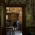 The Orange Kitchen Chair In Garnet by Lorraine Devon Wilke