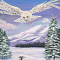 The Owl And The Rat by Phyllis Kaltenbach