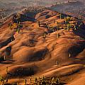 The Painted Dunes by Greg Nyquist