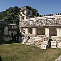 The Palace    Palenque by Ty Lee