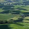 The Palouse 1 by Bob Christopher