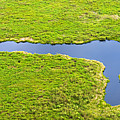 The Pantanal Seen From The Sky Vii by Picture by Tambako the Jaguar
