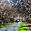 The Path by Debbi Granruth