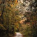 The Path Less Traveled 2 by Jai Johnson