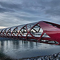 The Peace Bridge by Guy Whiteley