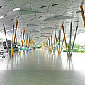 The Pick Up Point At Changi Airport In Singapore  by Steve Taylor