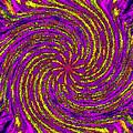 The Pinwheel by Tim Allen