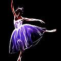 The Princess Dancer by Steve K