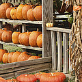 The Pumpkin Shack At Isom's Orchard by Kathy Clark