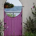 The Purple Door by Dennis Pintoski