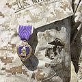 The Purple Heart Award Hangs by Stocktrek Images