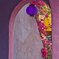 The Purple Lantern by Roger Mullenhour