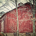 The Red Barn by Lisa Russo