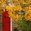 The Red Door by Kathy Clark