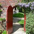 The Red Door by Robert Harris