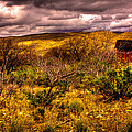 The Red Shed At Red Rock Canyon by David Patterson