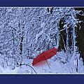 The Red Umbrella by Ron Jones