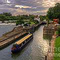 The River Thames At Goring by Rob Hawkins