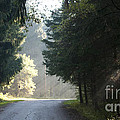 The Road Out Of The Conservation Area by Gary Chapple