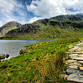 The Rocky Path by Adrian Evans