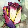The Rose by Nora Blansett
