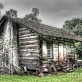 The Rural Life by Robert Cook