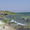 The Sea Of Galilee by Eva Kaufman