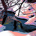 The Shades Of Winter by Shirley Mailloux