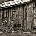 The Shed Sepia by Steve Harrington