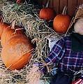 The Shy Pumpkin-man by John Scates