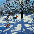 The Slide In Winter by Andrew Macara