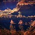 The Spectacular Grand Canyon by Julie Niemela