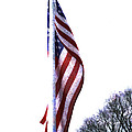 The Star Spangled Banner by Steve Taylor