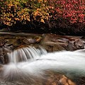 The Steady River Flow by Mitch Johanson