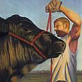 The Steer by Christian Vandehaar