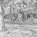 The Stump by Jonathan Armes