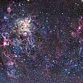 The Tarantula Nebula by Robert Gendler