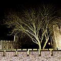 The Tower Of London At Night  by David Pyatt