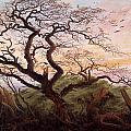 The Tree Of Crows by Caspar David Friedrich