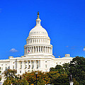 The United States Capitol by Brittany Horton