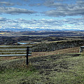 The View Point by Diane Dugas