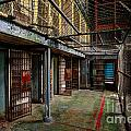 The West Virginia State Penitentiary Cells by Dan Friend