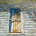 The Window by Joe Roache