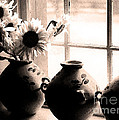 The Window Vases by Mike Nellums